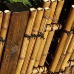 Бамбуковый забор для дачи: рулонный