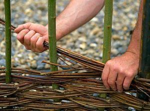 Плетение забора из мелких прутьев ивы