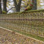 декоративный плетеный забор из ивы