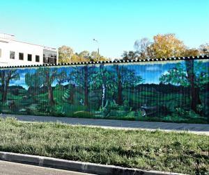 Живые изгороди и новаторский подход к декорированию забора на собственном дачном участке