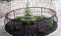 Заборчик для клумбы: декоративный пластиковый и металлический