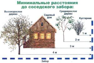 Эскиз с указанием расстояний от дачного дома до ограждения
