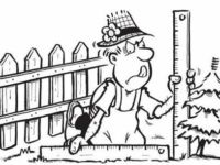 Забор частного дома между соседями: закон о высоте, нормативы возведения