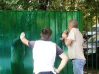Забор из поликарбоната: цветные монолитные листы для дачи