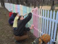 Деревянный забор: покраска надолго, как покрасить, какой краской