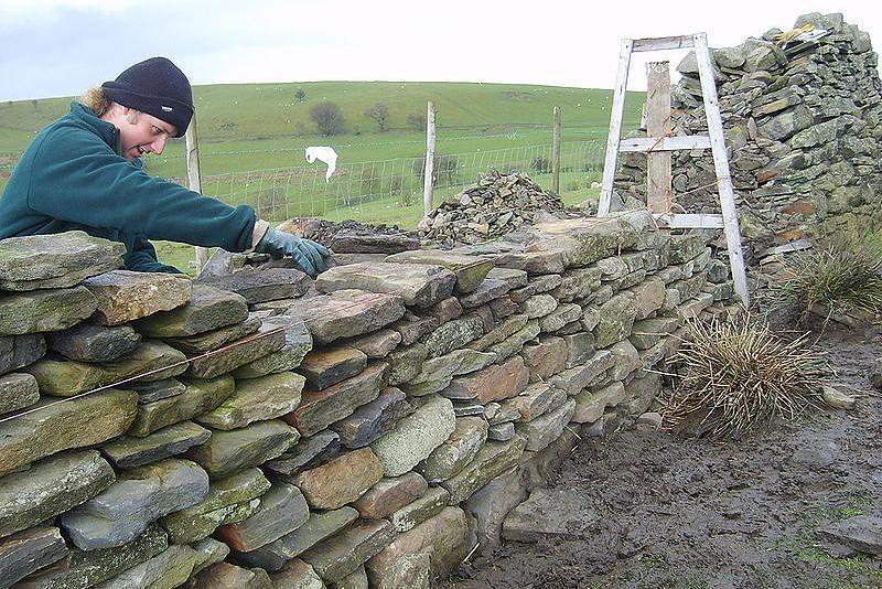 Забор из камня: кладка и дизайн своими руками