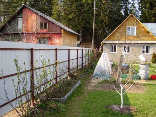 Забор между соседями на СНТ: какая высота, как устанавливать?