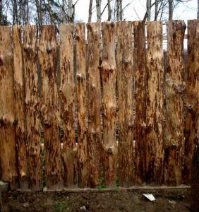 Вертикальное расположение необрезной древесины